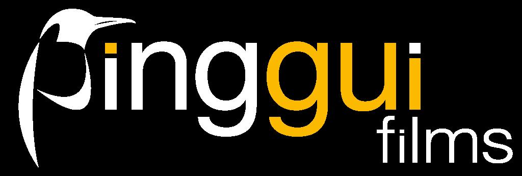 pinggui-films.de